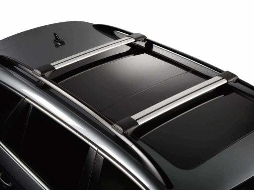 Whispbar Dakdragers (Zilver) Citroen C4 Cactus 5dr Hatch met Dakrails bouwjaar 2014 - e.v.|Complete set Dakdragers
